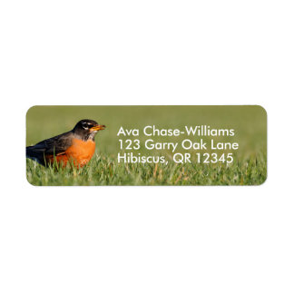 A Curious American Robin Label