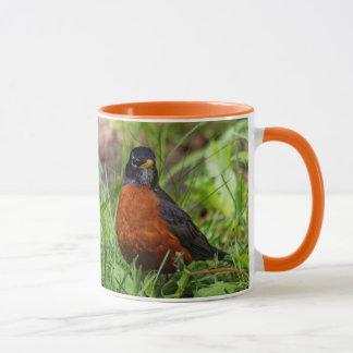A Curious and Hopeful American Robin Mug