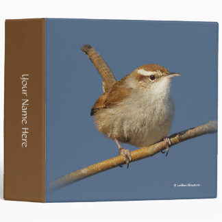 A Curious Bewick's Wren in the Tree Binder