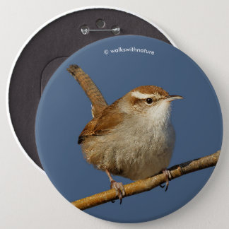 A Curious Bewick's Wren in the Tree Button