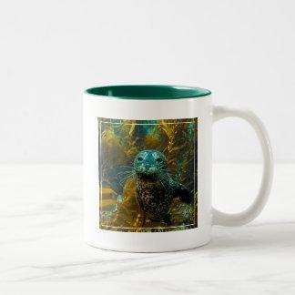 A Curious Harbor Seal Kelp Forest   Santa Barbara Two-Tone Coffee Mug