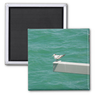 A Cut Fishing Bird On The Side Of Strut Above Wate Fridge Magnets