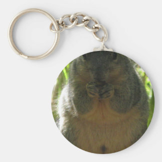 A cute, adorable squirrel picture keychain