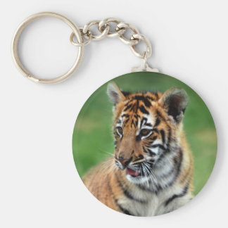A cute baby tiger basic round button keychain