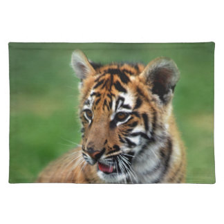 A cute baby tiger cloth placemat