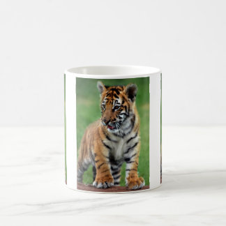 A cute baby tiger coffee mug