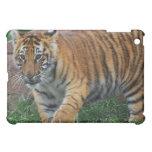 A cute baby tiger iPad mini case