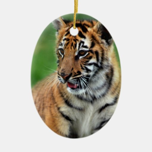 A cute baby tiger Double-Sided oval ceramic christmas ornament
