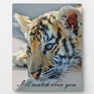 A cute baby tiger plaque