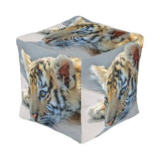 A cute baby tiger pouf