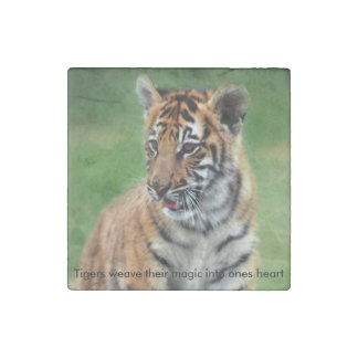 A cute baby tiger stone magnet