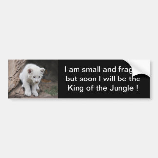 A cute baby white lion bumper sticker