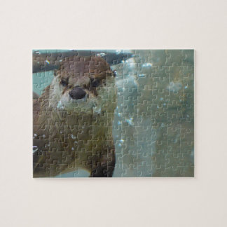 A cute Brown otter swimming in a clear blue pool Jigsaw Puzzle