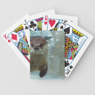 A cute Brown otter swimming in a clear blue pool Deck Of Cards