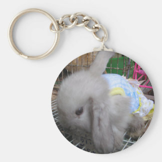 A Cute Bunny Rabbit in a Dress Basic Round Button Keychain