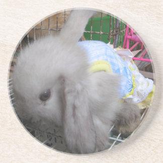 A Cute Bunny Rabbit in a Dress Drink Coaster