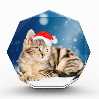A Cute Cat wearing red Santa hat Christmas Snow Acrylic Award