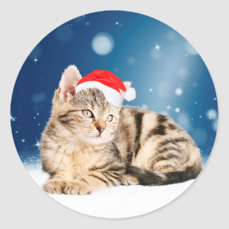 A Cute Cat wearing red Santa hat Christmas Snow Classic Round Sticker