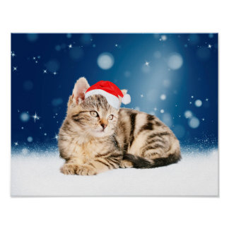 A Cute Cat wearing red Santa hat Christmas Snow Poster