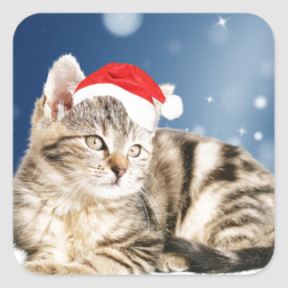 A Cute Cat wearing red Santa hat Christmas Snow Square Sticker