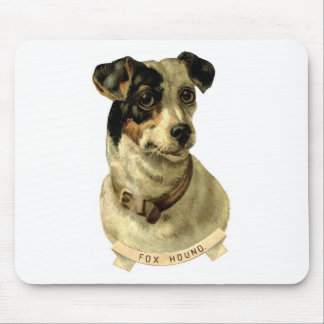 A cute Fox Hound dog Posing Mouse Pad