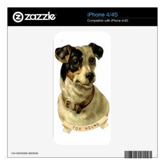 A cute Fox Hound dog Posing Skin For iPhone 4S
