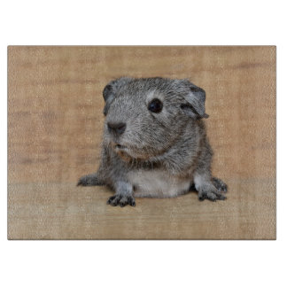 A Cute Gray Guinea Pig on Brown Wood Cutting Board
