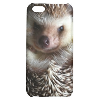 A cute hedgehog case for iPhone 5C
