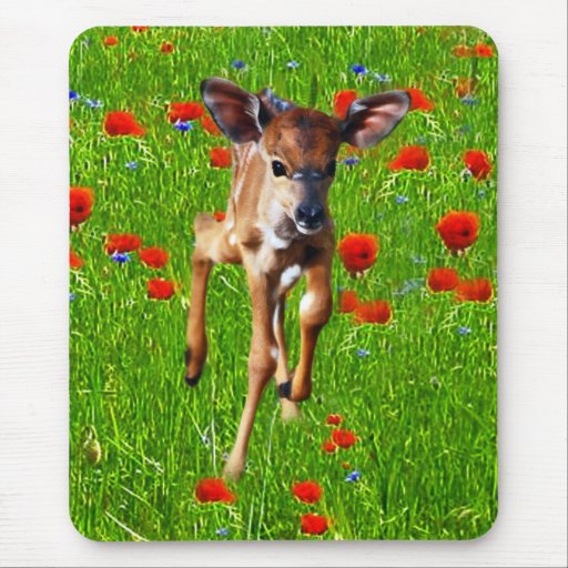 A cute little baby Nyala's joy Mouse Pad
