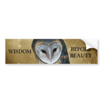 A Cute little Barn Owl Fantasy Bumper Sticker