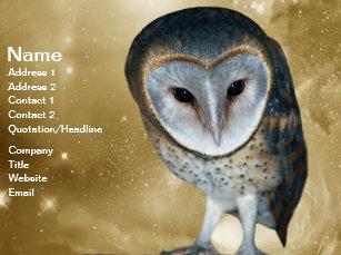 Cute owl business cards zazzle a cute little barn owl fantasy business card colourmoves