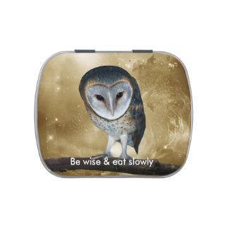 A Cute little Barn Owl fantasy Jelly Belly Tin
