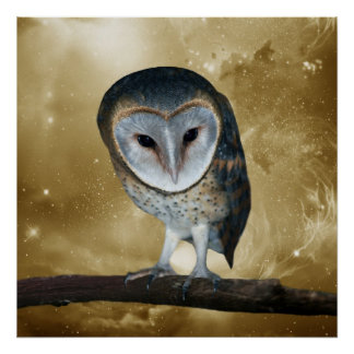 A Cute little Barn Owl Fantasy Poster