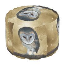 A Cute little Barn Owl fantasy Pouf