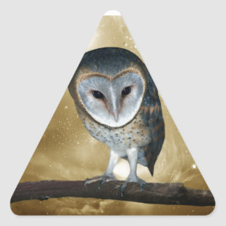 A Cute little Barn Owl fantasy Triangle Sticker