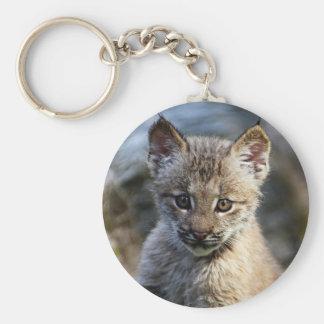 A Cute Little Canadian Lynx Kitten Basic Round Button Keychain