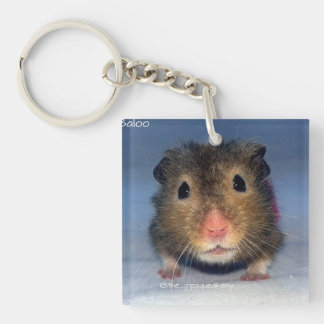 A Cute Nose! Square Acrylic Key Chain