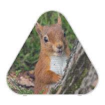 A cute red squirrel bluetooth speaker