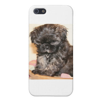 A Cute Shih Tzu Pup makes this product adorable Case For iPhone SE/5/5s