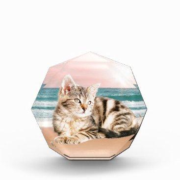 Beach Themed A Cuter Striped Cat Sitting on Beach with sunset Acrylic Award