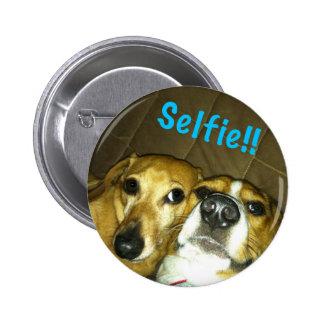 A dachshund and a beagle taking a selfie button