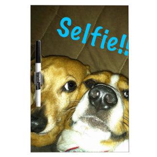 A dachshund and a beagle taking a selfie Dry-Erase board