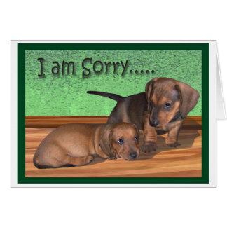 A dachshund puppy apology card
