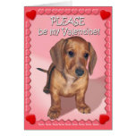 A Dachshund Puppy's Wish for Valentines Day Cards