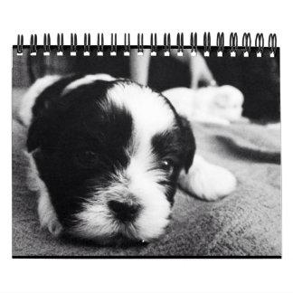 A Daily Dose of Panda Calendar