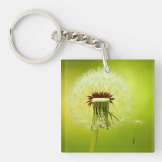 A Dandelion Blown By The Wind Keychain