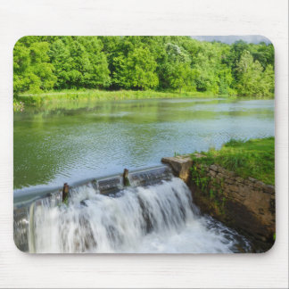 A Day At Ritter Springs Mouse Pad