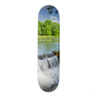 A Day At Ritter Springs Skateboard Deck