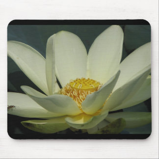 A Day at the Pond Series Mouse Pad