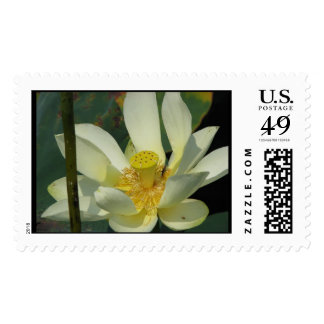 A day at the pond series postage